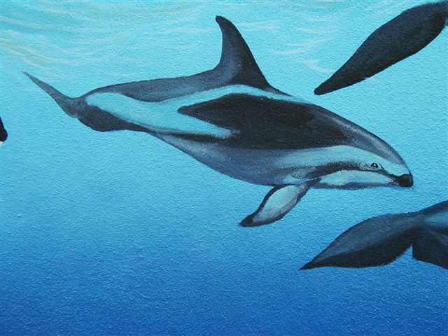 'Dolphin detail' by C. S. Bauman